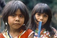 Amazonie2.jpg
