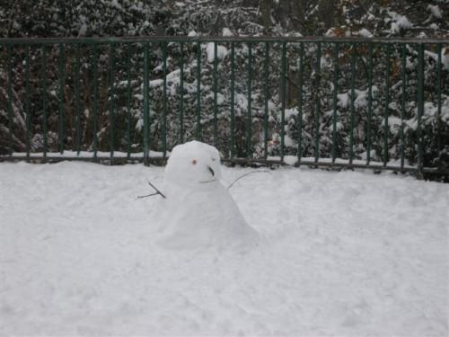 2013-01-20 Buttes bonhomme neige DSCN6196_1226 (Small).JPG