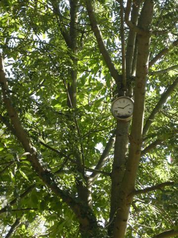 2012-09-09 Marne horloge DSCN5855_884 (Small).JPG